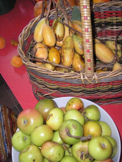 Peninsula banana passionfruit and apples