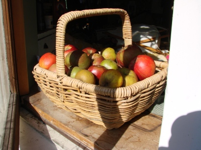 Mixed heritage apples.
