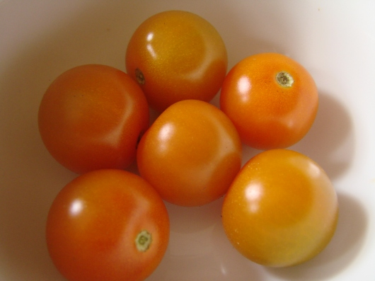 Sungold cherry tomatoes, outside ripened mid January!
