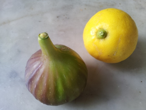 'Brown Turkey' fig, 'Meyer' lemon
