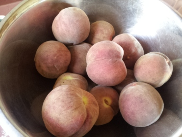 'Blackboy' peaches