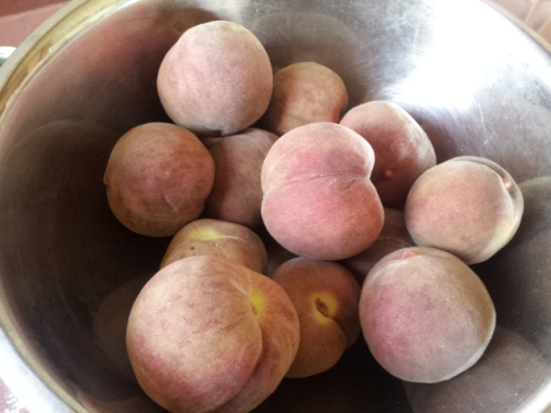 'Blackboy' peaches