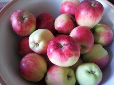 'Liberty' apple