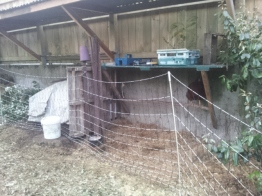 Chicken roost and nesting box under construction