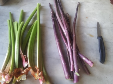 Rhubarb and Sweet Purple asparagus