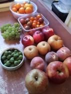Cocktail kiwi, grapes, toms, apples, peaches