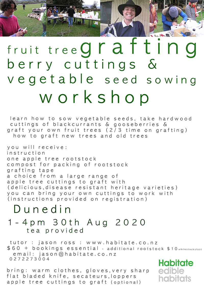 Grafting-Workshop-2020-Poster